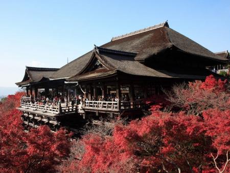 Visite des temples, cours de Yatsuhashi, quartiers de Gion et de Pontocho