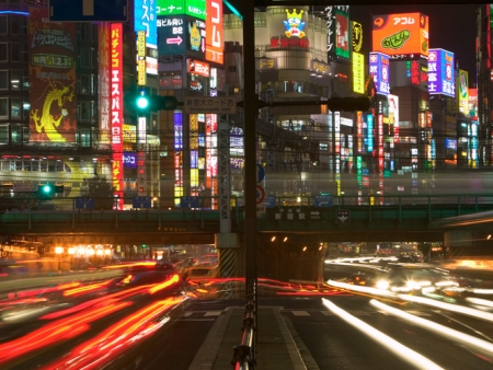 Discover the city, Shinjuku, Harajuku and Shibuya districts and Yoyogi Park