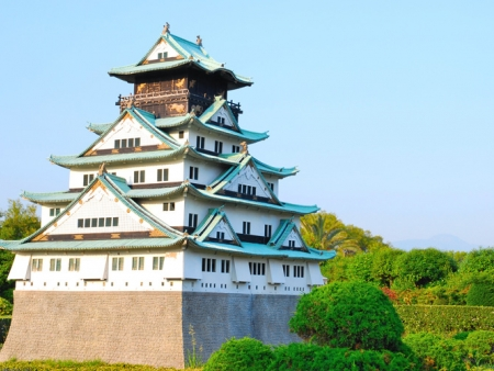 Discover Osaka Castle and Umeda district