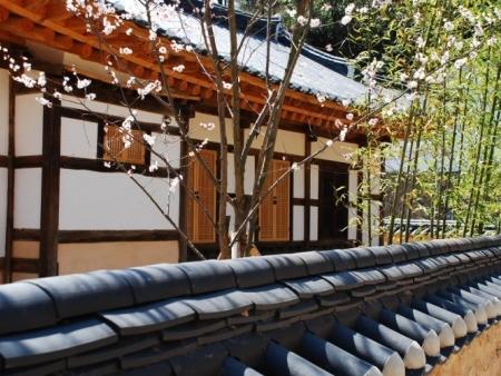 Les 80 bouddhas d'Unjusa