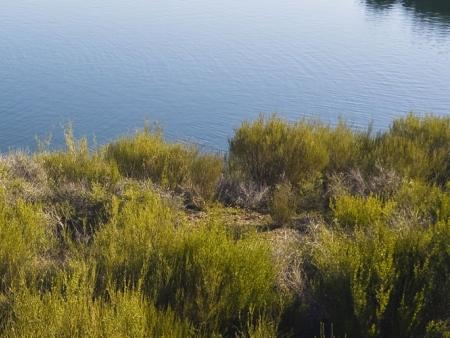 Au bord du lac Sijung