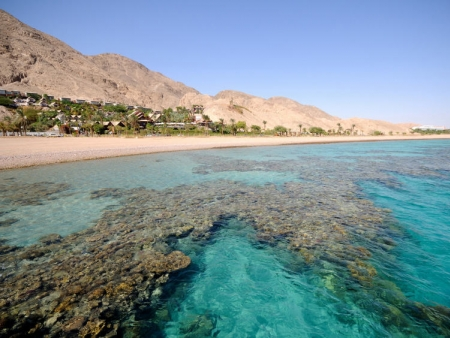 Détente sur les rives de la Mer Morte