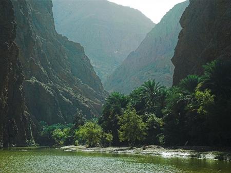 Explorations des environs : baignades et paysages omanais