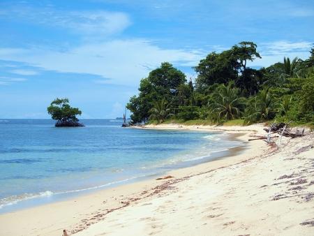 Forêt humide et plages de rêve