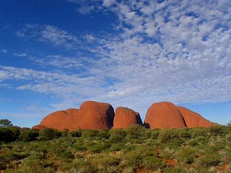 Rêve d'outback