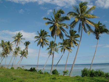Viti Levu, eden pacifique