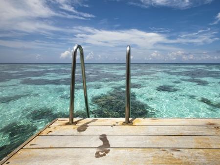Dans le sillage de Cousteau…