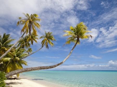 Dernière escale tropicale