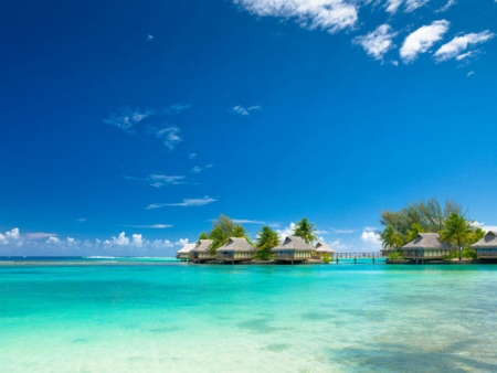 Promenade sur l'île