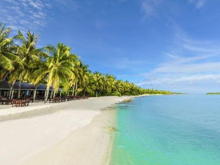 Entre lagons et cocotiers