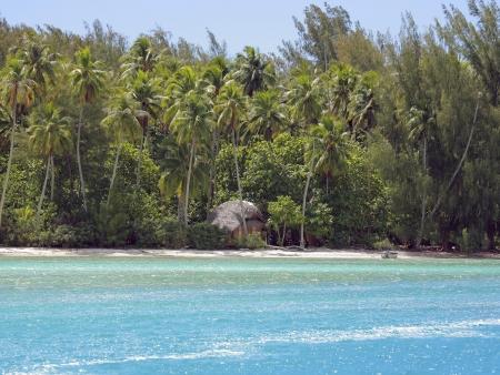 Forêt tropicale, baie de sable et vallée