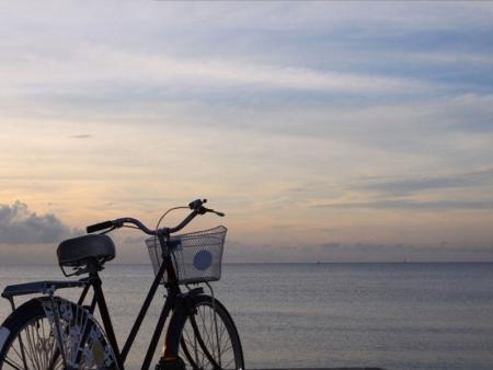 Vélo à Chiang Mai