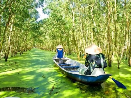 Le grenier à riz du Vietnam