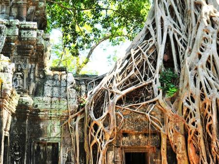 A la découverte des temples