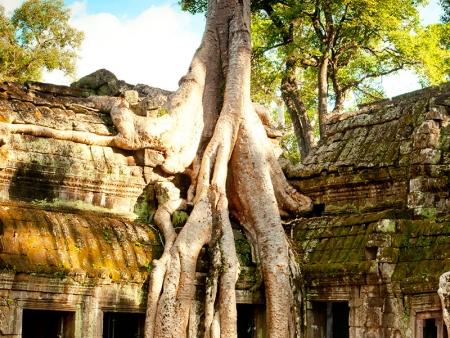Les environs d'Angkor