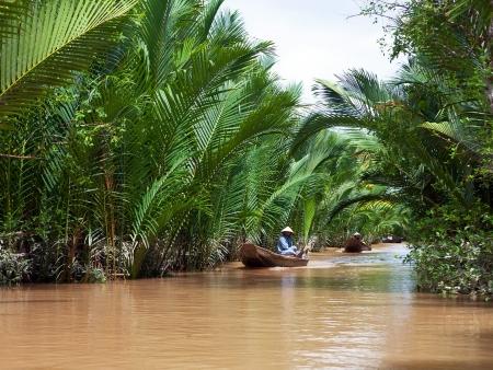 La mangrove de Can Gio