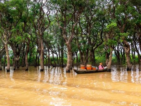 Marchés flottants du Mékong