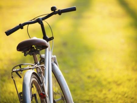 5 jours à bicyclette…