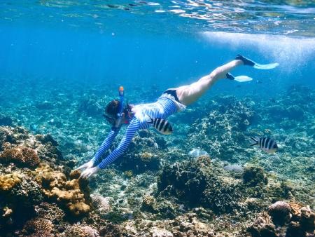 Un dernier plongeon !