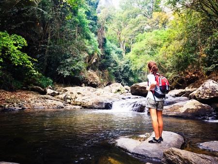 Entre rivière et forêt…