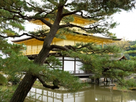 "Temples and shrines, Nijo castle, Arashiyama district and the ""Pomme"" cafe"
