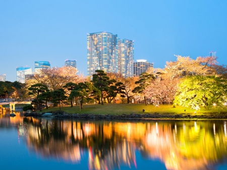 Discover the city, a local Japanese restaurant and Hamarikyu Japanese garden