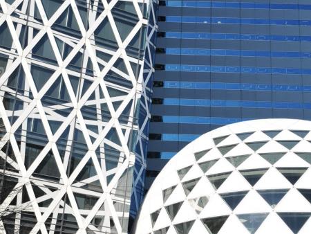 Visit the city, the Buddhist temple of Senso-ji, Harajuku and Shibuya districts and Yoyogi Park