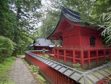 Discover the sacred Toshogu shrine