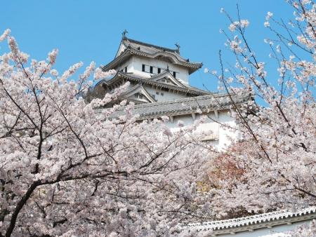 Ferry for Hiroshima and sacred island of Miyajima