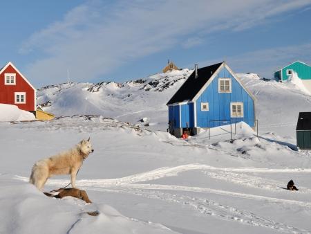En route vers le glacier Sermeq Avagnardleg