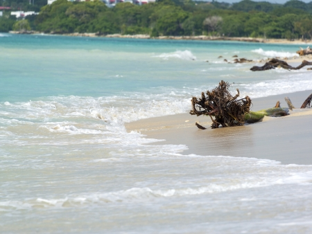 Direction les îles paradisiaques du Rosaires !