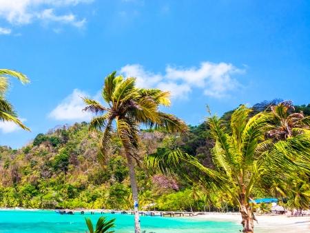 Des plages mythiques et des eaux chaudes et limpides…
