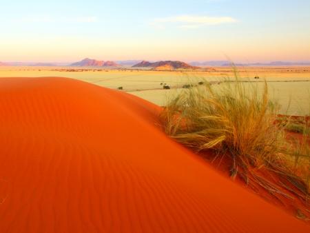 Expérience Kalahari (300 km)