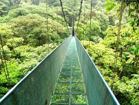 En route vers la jungle Costaricienne !