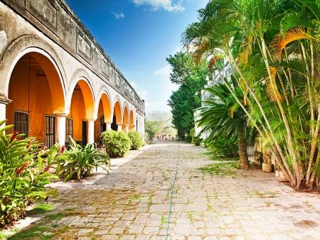 A la découverte de l'or vert du Yucatan !
