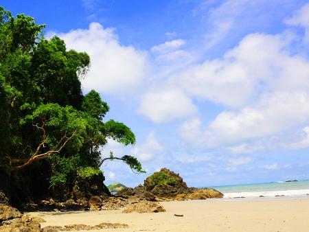 Des hauts sommets aux plages du Pacifique…