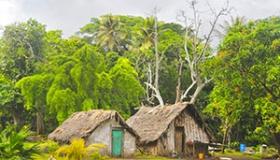 Voyage à Vanuatu