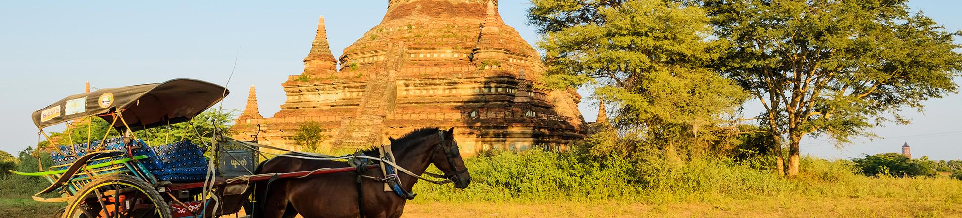 Balade en calèche à Bagan